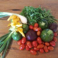 Verdure dell'orto