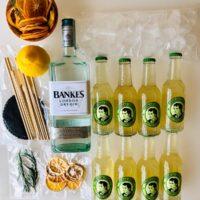 Kit London Dry Gin and lemon
