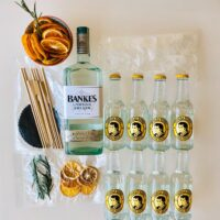Kit London Dry Gin and tonic